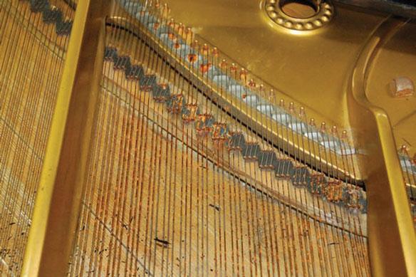 Grave corrosión en las cuerdas de un piano Steinway & Sons